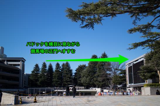 TokyoBKnorth01